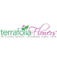 Terrafolia Inc.